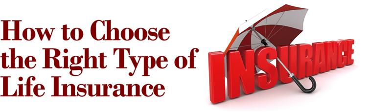 Best life insurance options